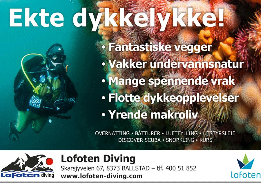 Lofoten Diving AS