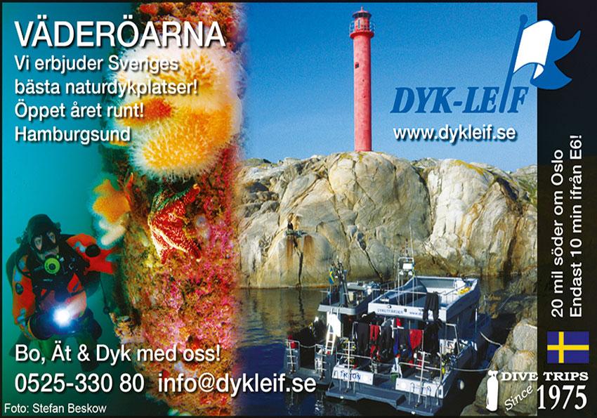 Annonsebanner Dyk-Leif