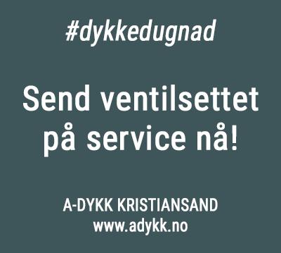 Korona-service-adykk-350px