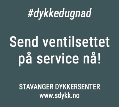 Korona-service-sdykk-350px