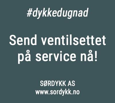 Korona-service-sordykk-350px