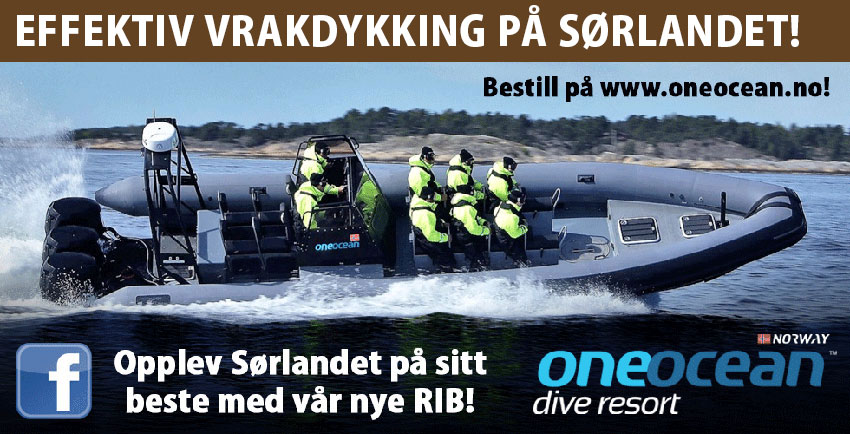 One Ocean 850px - RIB
