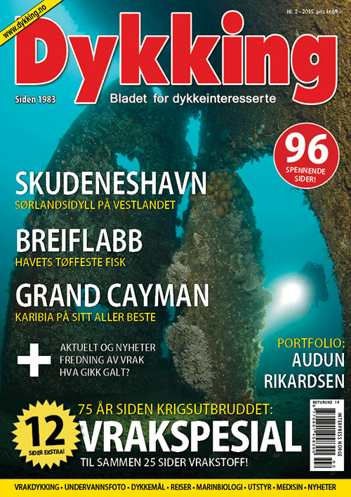 Dykking 2/2015