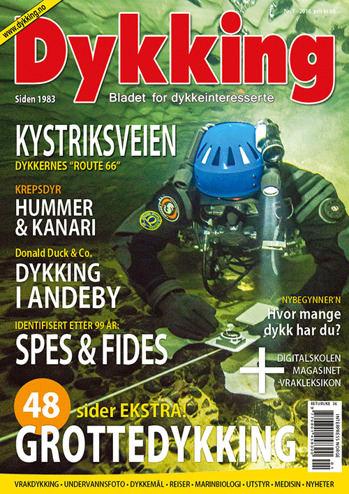 Dykking 1/2016
